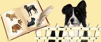 Les races de Dogzer