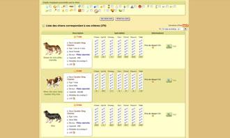 Dogzer - Acheter un chien aux encheres et autres interactions